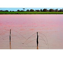 The Pink Lake # 2 Photographic Print