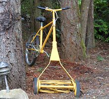 The ultimate riding lawnmower by Rainydayphotos