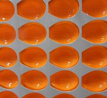 Orange moulds by Carol Dumousseau
