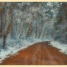 Frozen #2 - Oberon NSW - The HDR Experience by Philip Johnson