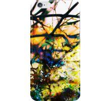 Dark and Light iPhone Case/Skin