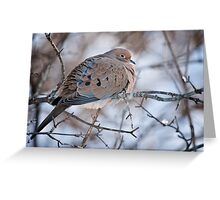 Mouring Dove In Shrubs Greeting Card