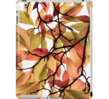 Backlit Colour iPad Case/Skin