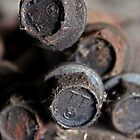 Rusted Bolts by Rebecca Shurtleff