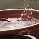 Rain drops by Vincent Teh