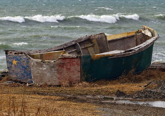 Lonely Acadian Boat by Debbie  Roberts