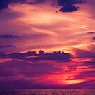 Fire In The Sky by Lynne Morris