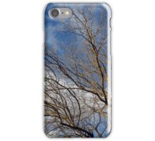 Tree in Winter iPhone Case/Skin