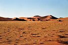 Sculptural Dunes, Namibia by Carole-Anne