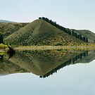 Cromwell Dam Reflections #2, New Zealand by Carole-Anne