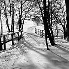 trail by Jari Hudd