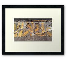 walkside # 4029 BXR Framed Print