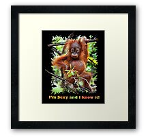 I'm Sexy and I Know It! ;} Framed Print