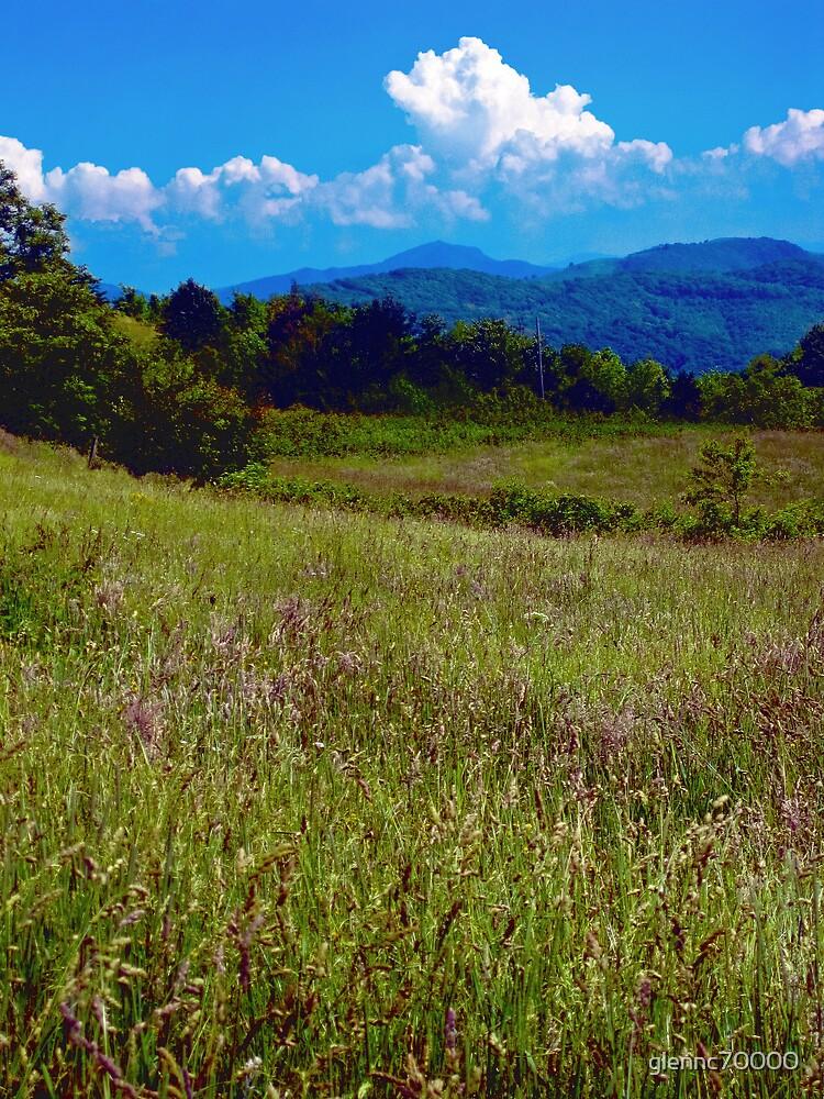 Appalachian View by Glenn Cecero