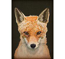 Mrs. Fox Photographic Print