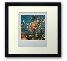 in succession Framed Print