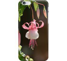 Fuchsia iPhone Case/Skin