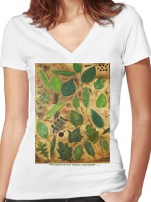 Wisconsin Leaves Women's Fitted V-Neck T-Shirt