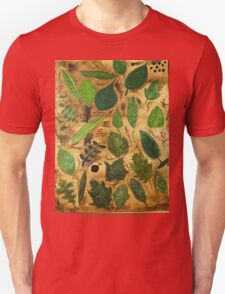 Wisconsin Leaves T-Shirt