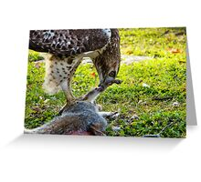 A hawk and it's meal Greeting Card