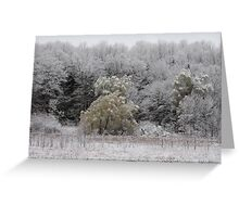 Dusting of snow Greeting Card