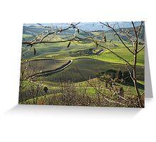 Toscana countryside Greeting Card