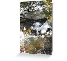 Spring brook Greeting Card