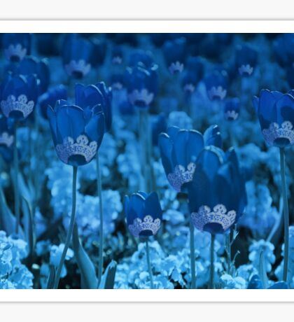 Tulips... Sticker