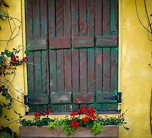 Green shutter with flower box by KSKphotography