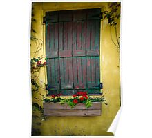 Green shutter with flower box Poster