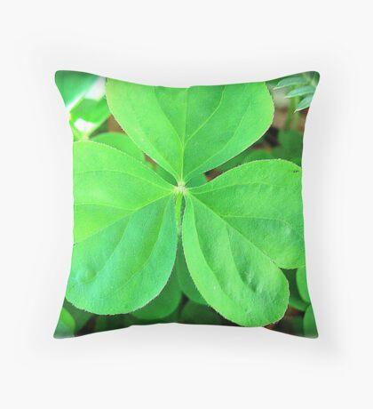 LUCK OF THE IRISH! Throw Pillow