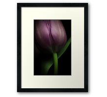 The beauty of lines Framed Print