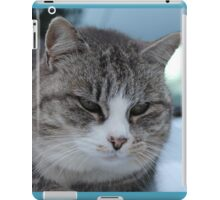 Uninterested Cat iPad Case/Skin