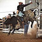 Ride Em Cowboy! by Madeleine  Biancon