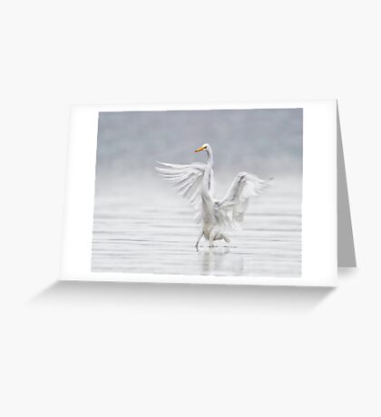 Landing in the Fog Greeting Card