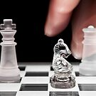 Chess 101: The knight moves to put the king in check by Lenka