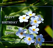 Happy Birthday to you for sarnia2 by vigor