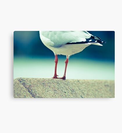 How about this side?...quackkk...Got 2 Featured Works Canvas Print