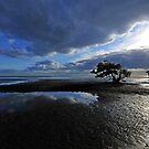 Nudgee Beach. Brisbane, Queensland, Australia. by Ralph de Zilva