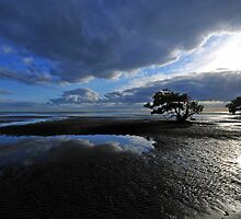 Nudgee Beach. Brisbane, Queensland, Australia. by Ralph de Zilva