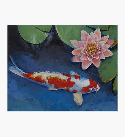 Koi and Water Lily Photographic Print