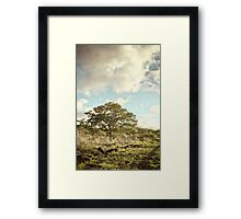 Path of the English #7 Framed Print