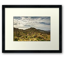 On the Top of the Mountain  Framed Print
