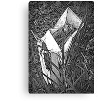 No More Mail Canvas Print