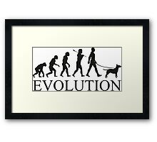 EVOLUTION bull terrier Framed Print