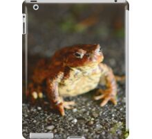 """"""" Nocturnal Toad """"  iPad Case/Skin"""