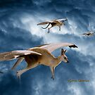 Flying Kangaroos by Gavin Lardner
