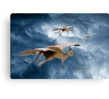 Flying Kangaroos Metal Print