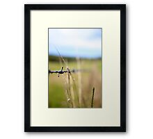 Hanging on a wire Framed Print