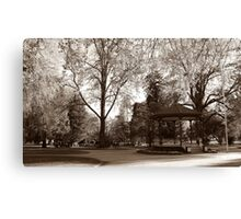 Cook Park, Orange NSW Canvas Print